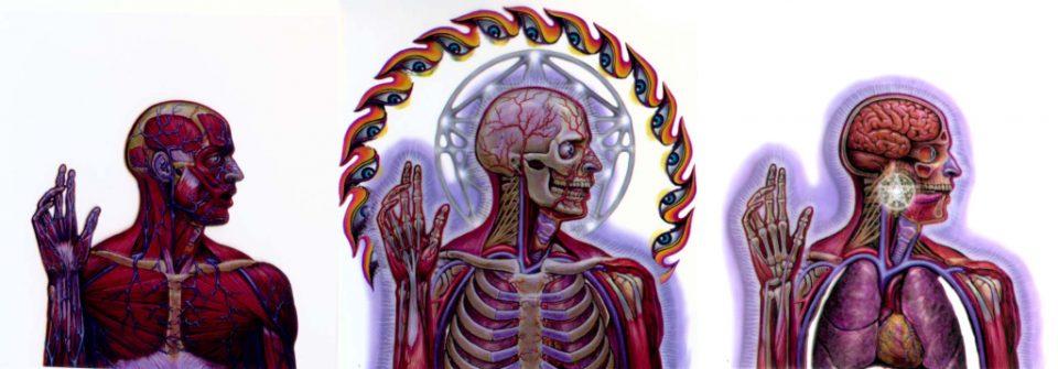 """Tre dei disegni realizzati da Alex Grey per la copertina di """"Lateralus"""", disco dei Tool, 2001"""